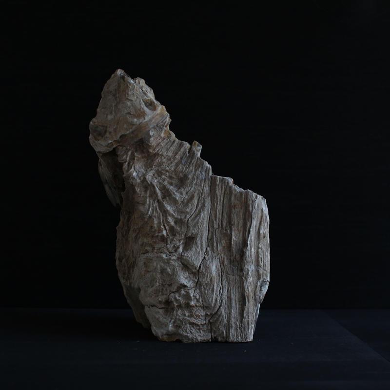 Petrified Wood Statue