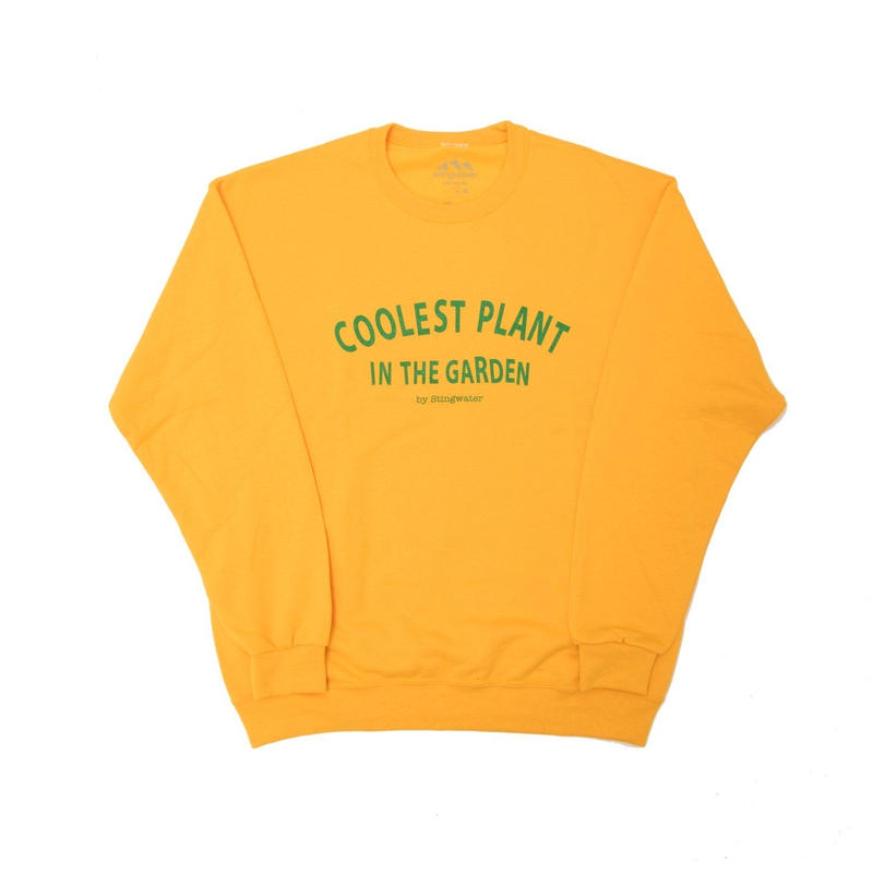 STING WATER COOLEST PLANT YELLOW JUMPER