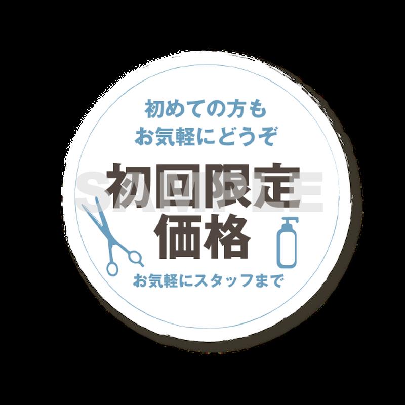 【POP素材】初回限定価格