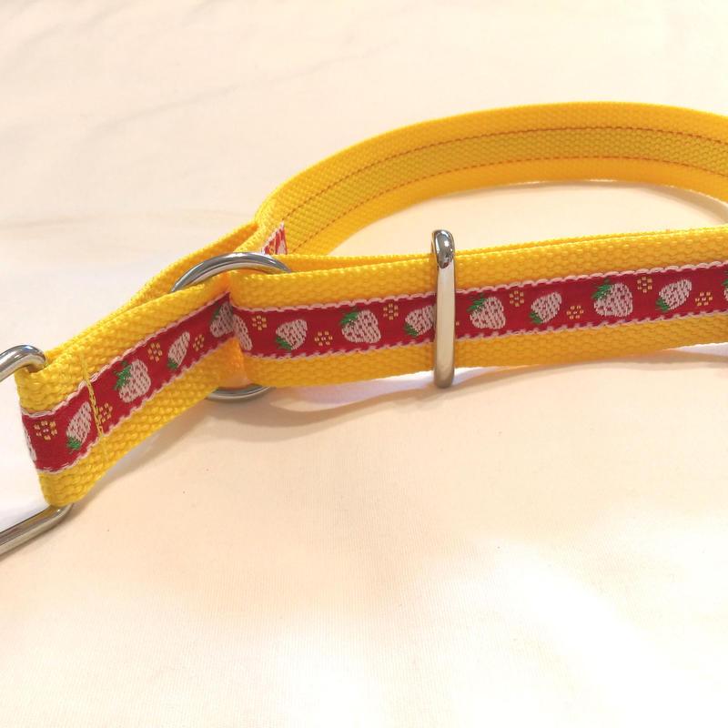 リミテッドチョークカラー(黄×赤イチゴ)XLサイズ