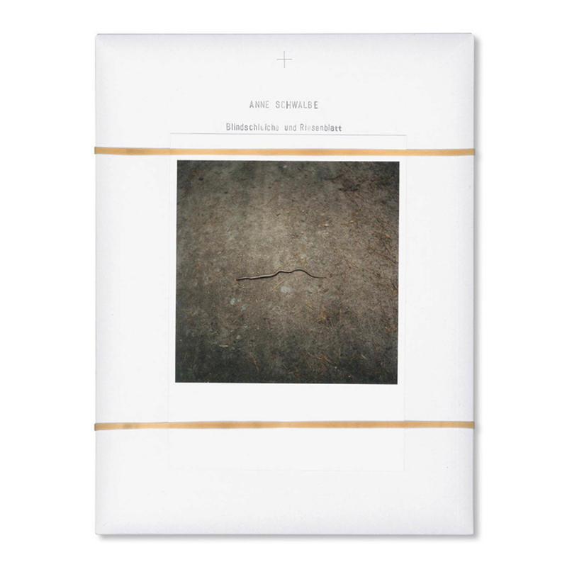 BLINDSCHLEICHE UND RIESENBLATT / Anne Schwalbe