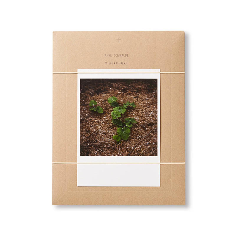 WIESE XXI-XLVIII / Anne Schwalbe
