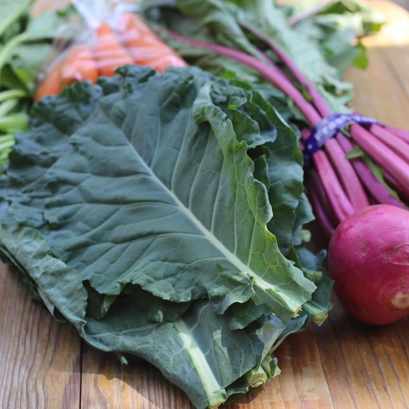 《全国宅配》富士山麓野菜 +グリンスムージ野菜