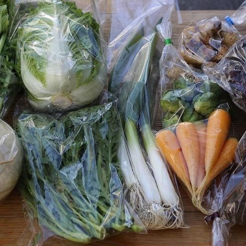 《全国宅配》富士山麓野菜 ファミリーセット