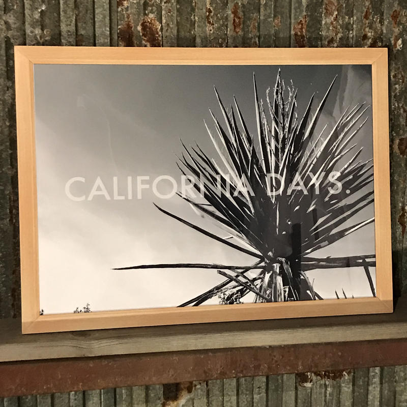 CALIFORNIADAYS./MONOCHROME PARK.(A1サイズ)