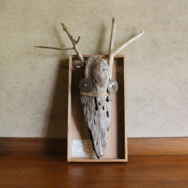 流木のハンターズ・トロフィー  Driftwood Hunter's Trophy