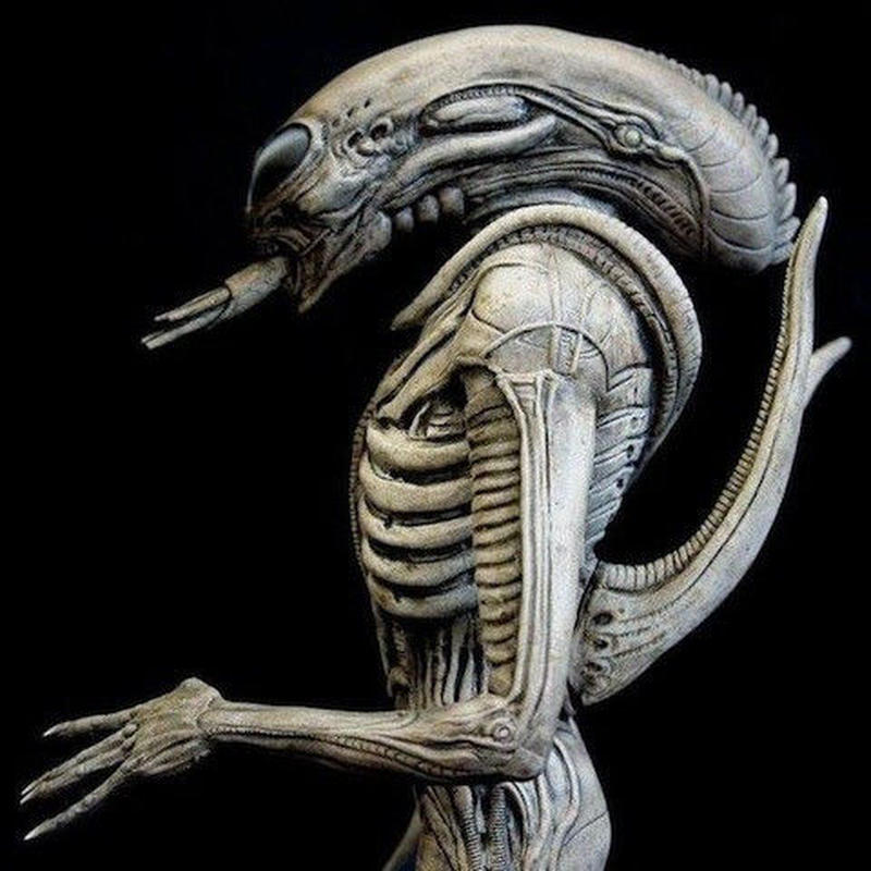 GIGERS ALIEN TRIBUTE キット【取り寄せ】
