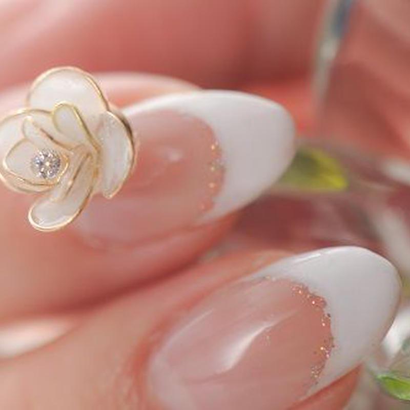薔薇 white