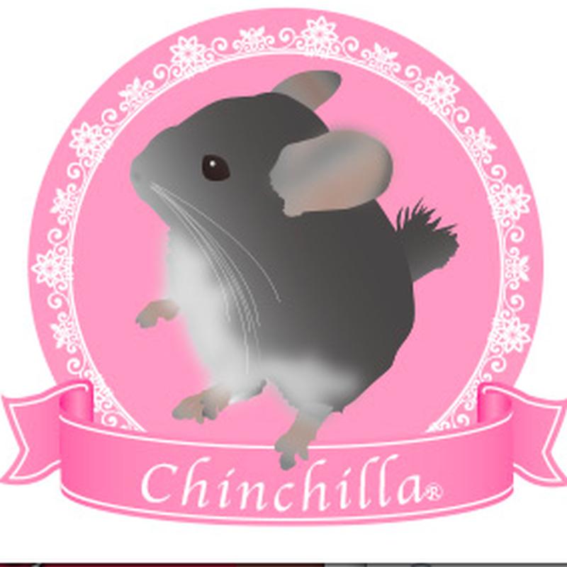 チンチラ リボンステッカー(ピンク)