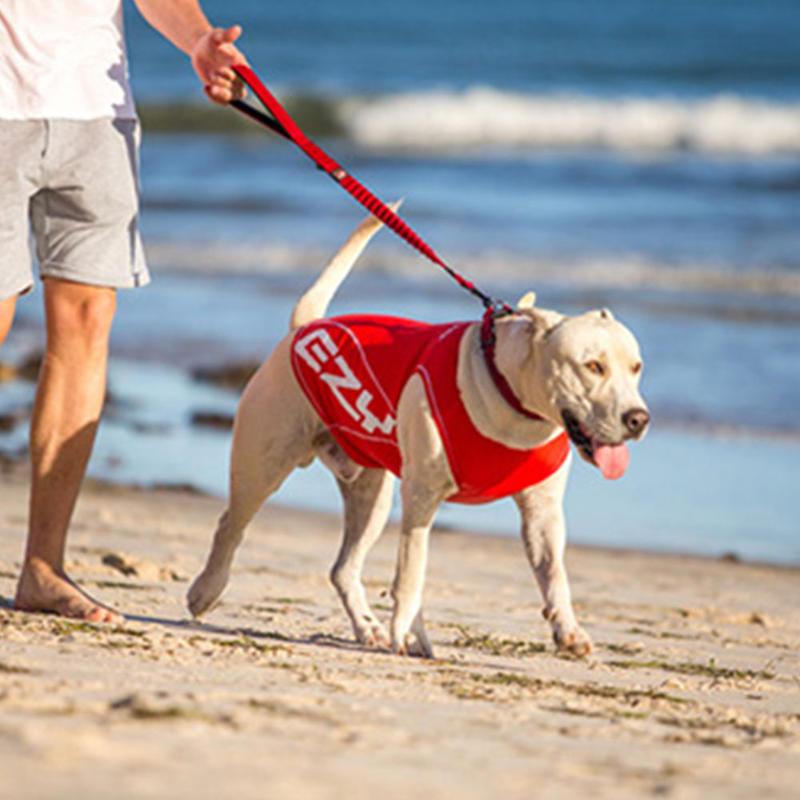 EZYDOG 犬用ラッシュガード ドッグラッシュガード Sサイズ(全1色)