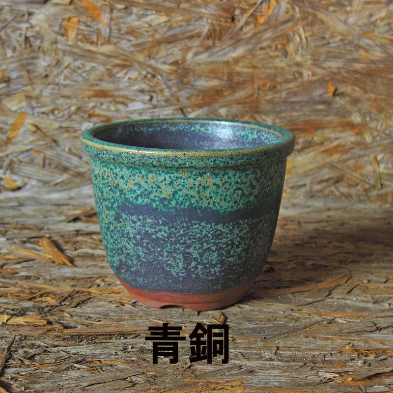 伝市鉢 丸型色付き 5号