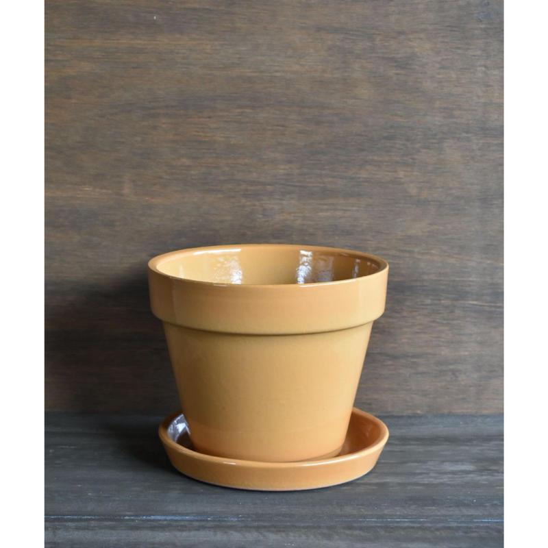 いざわ製陶 Vintage Glaze  Standard 6号  ( 受け皿つき)