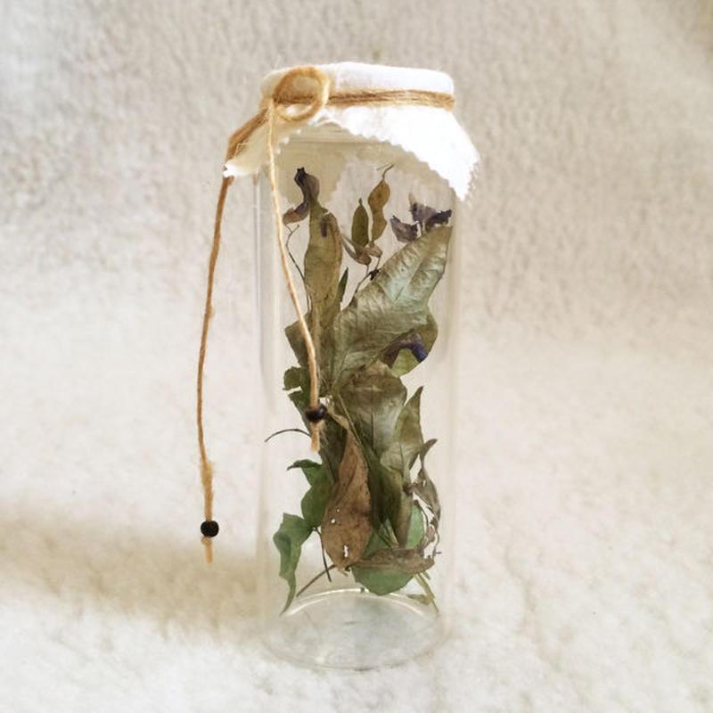 Dried Flower Deco-C