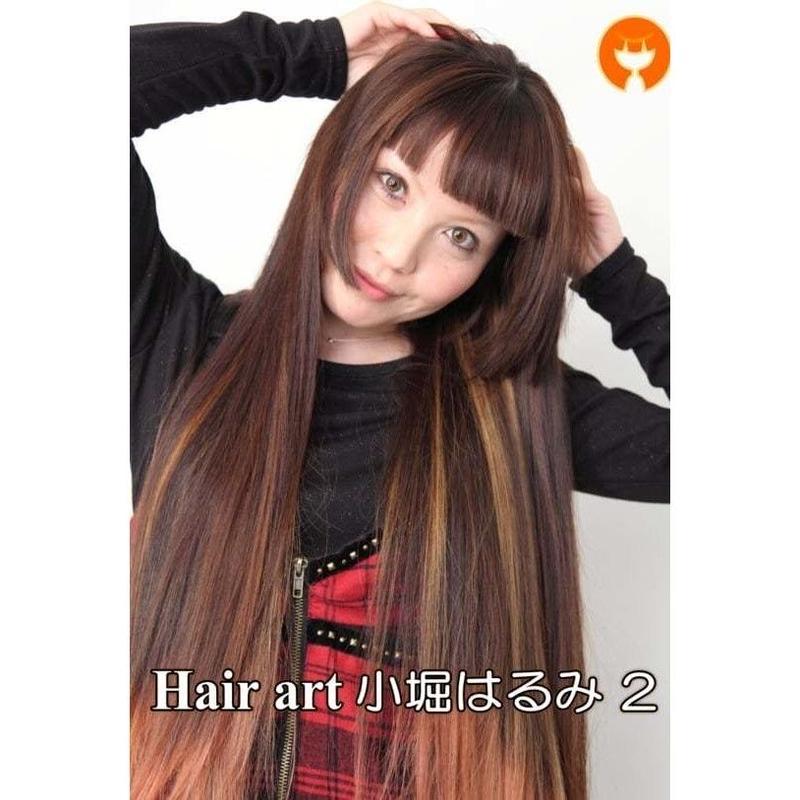 Hair art HARUMI 小堀はるみ 02 DVD