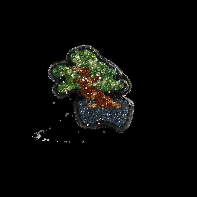【PP3'】盆栽