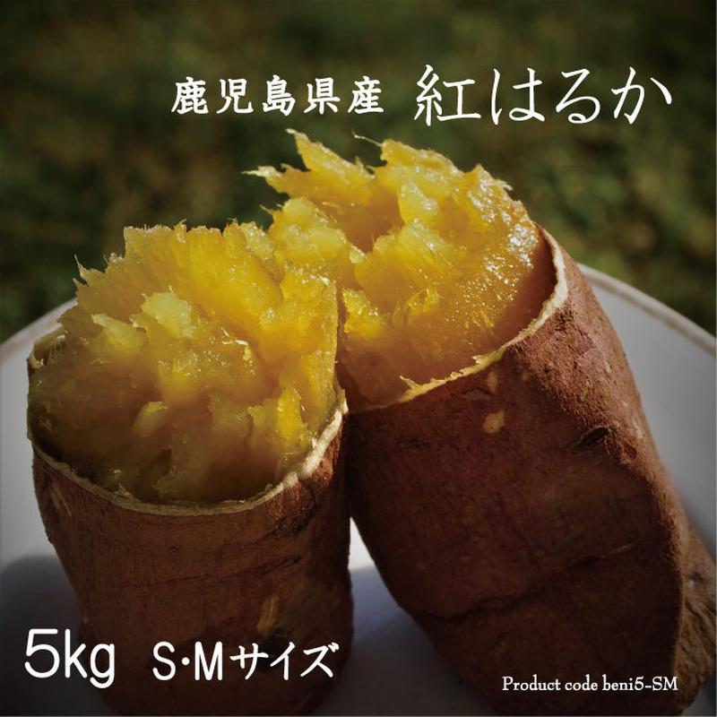 感動さつまいも 鹿児島県産紅はるか 5kg S/Mサイズ