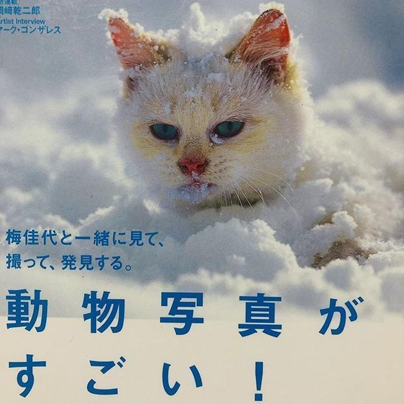 美術手帖 2011/02