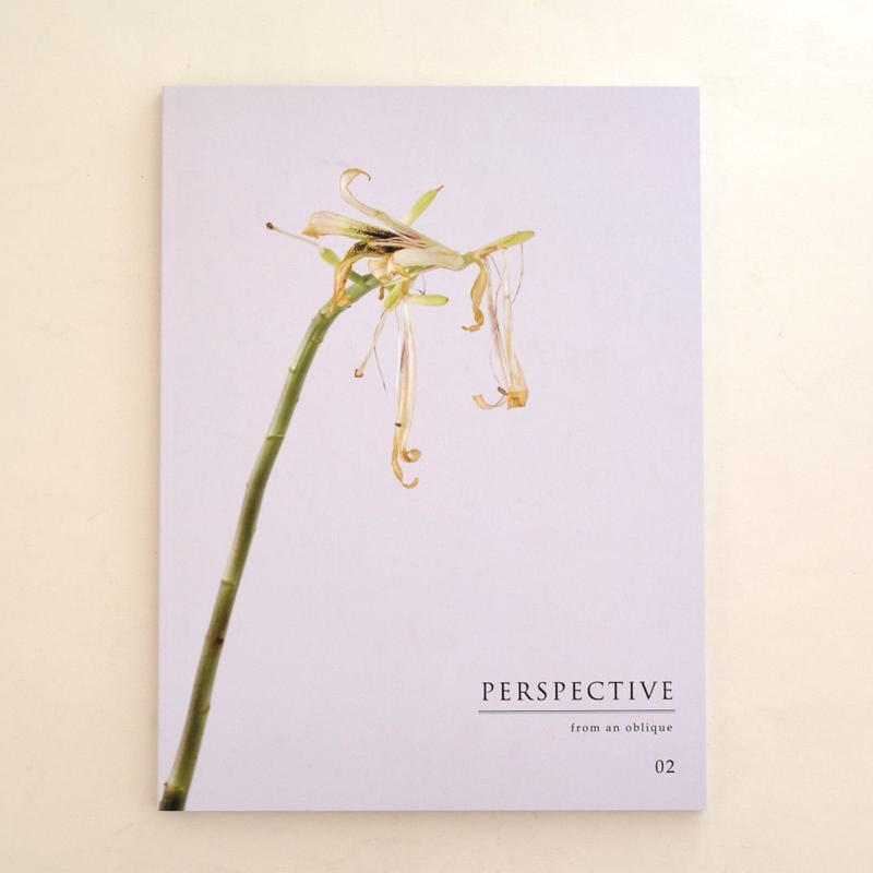 PERSPECTIVE from an oblique vol.2