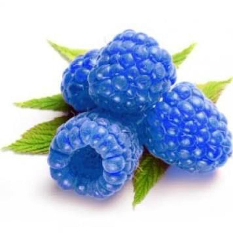 BLUE RASPBERRY 100ml ブルーラズベリー