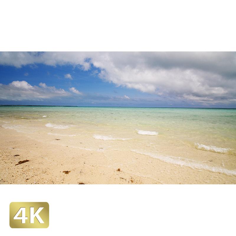 1038008 ■ 石垣島 浜島