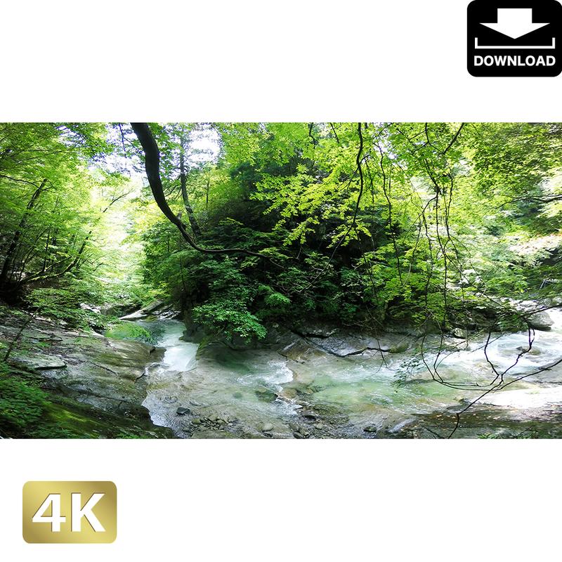 2010003 ■ 西沢渓谷 三重の滝