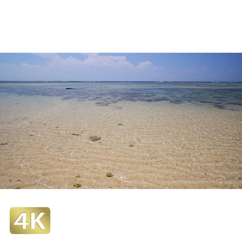1023036 ■ 西表島 南風見田の浜