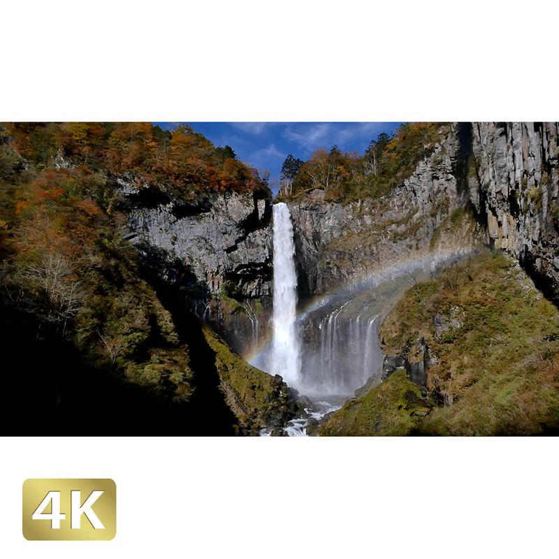 1014009 ■ 日光 紅葉 華厳の滝