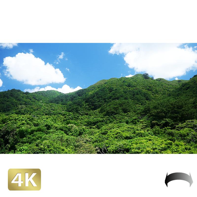 1038065 ■ 石垣島 於茂登岳