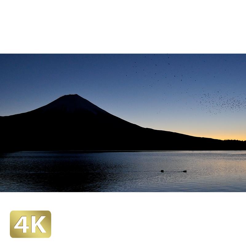 1018001 ■ 富士山 田貫湖