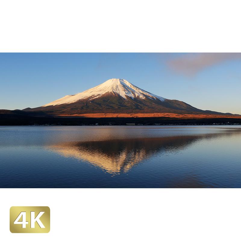 1018066 ■ 富士山 山中湖