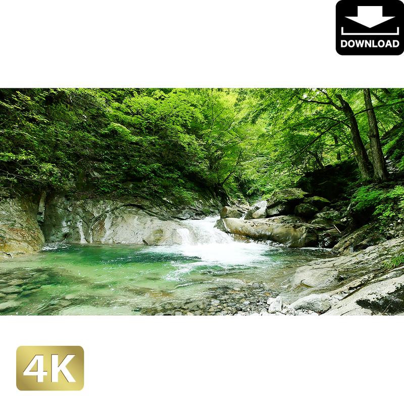 2010014 ■ 西沢渓谷 三重の滝上流