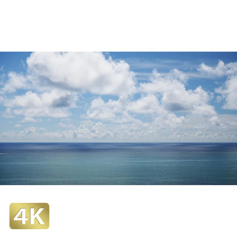 1038027 ■ 石垣島 太平洋