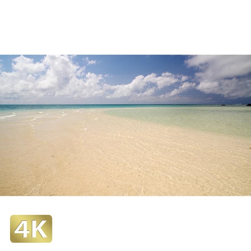 1038020 ■ 石垣島 浜島