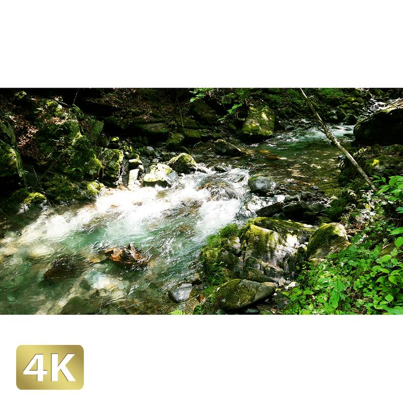 1005009 ■ 秋川渓谷 南秋川渓谷