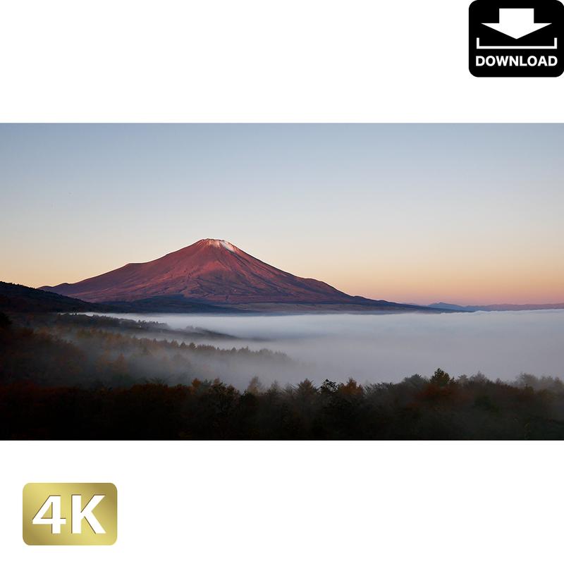 2015018 ■ 富士山 紅葉 紅富士