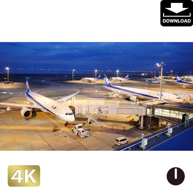 2028055-1 ■ 東京 羽田空港