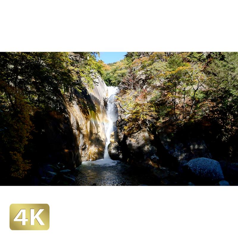 1015003 ■ 昇仙峡 紅葉 仙娥滝