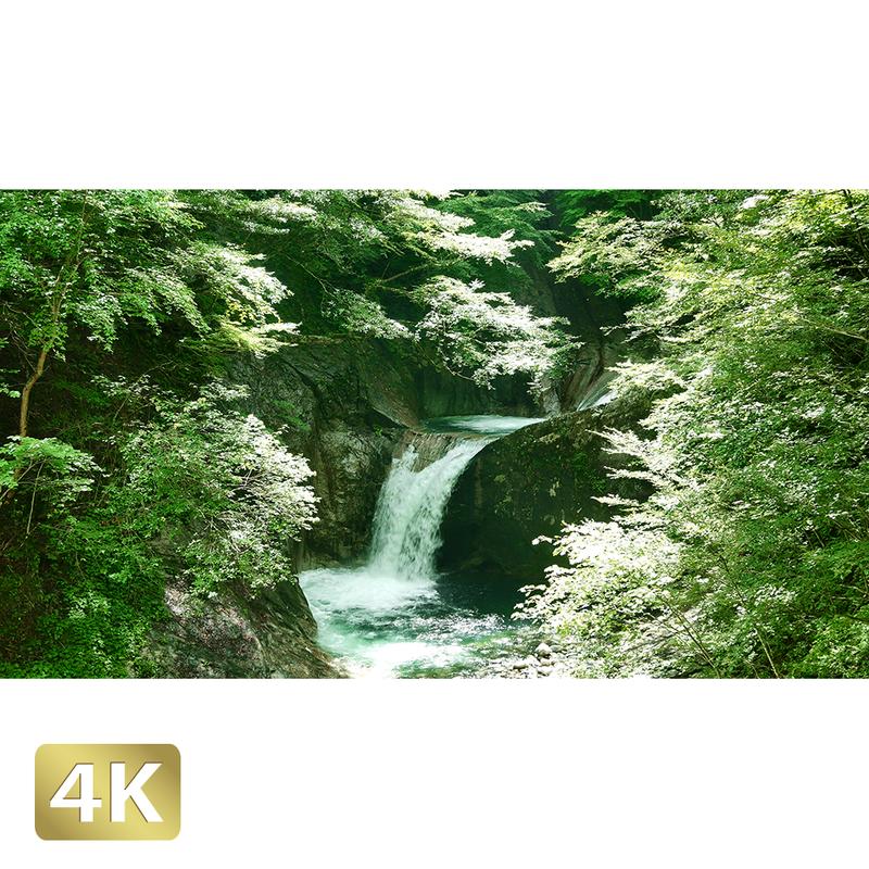1010010 ■ 西沢渓谷 竜神の滝