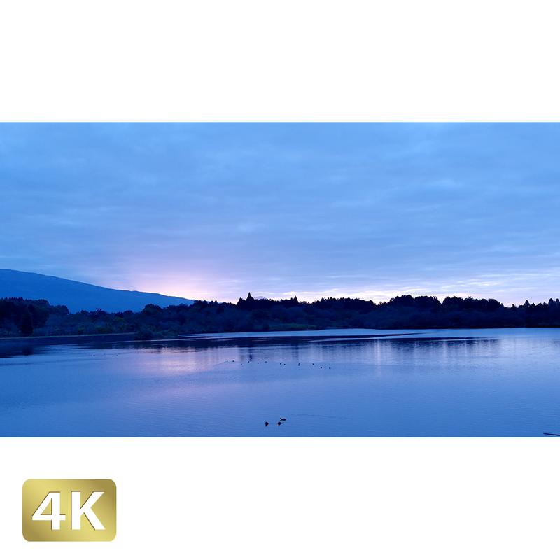 1016026 ■ 田貫湖 夜明け