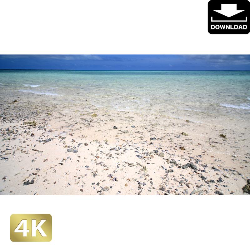 2038012 ■ 石垣島 浜島
