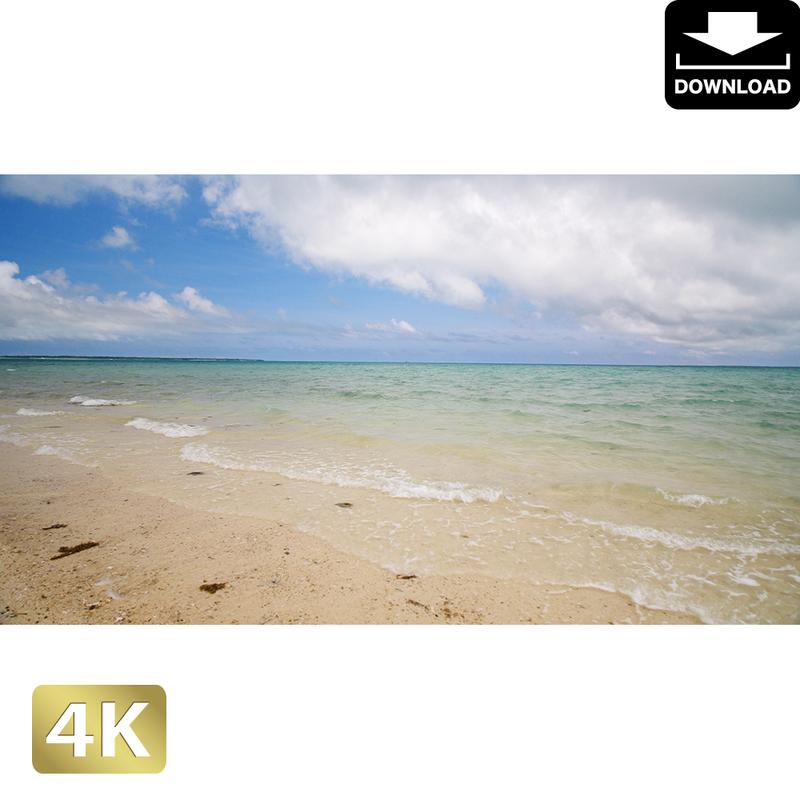 2038010 ■ 石垣島 浜島