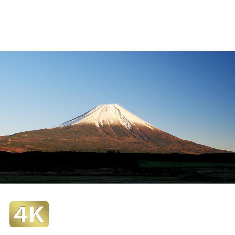1018056 ■ 富士山 朝霧高原