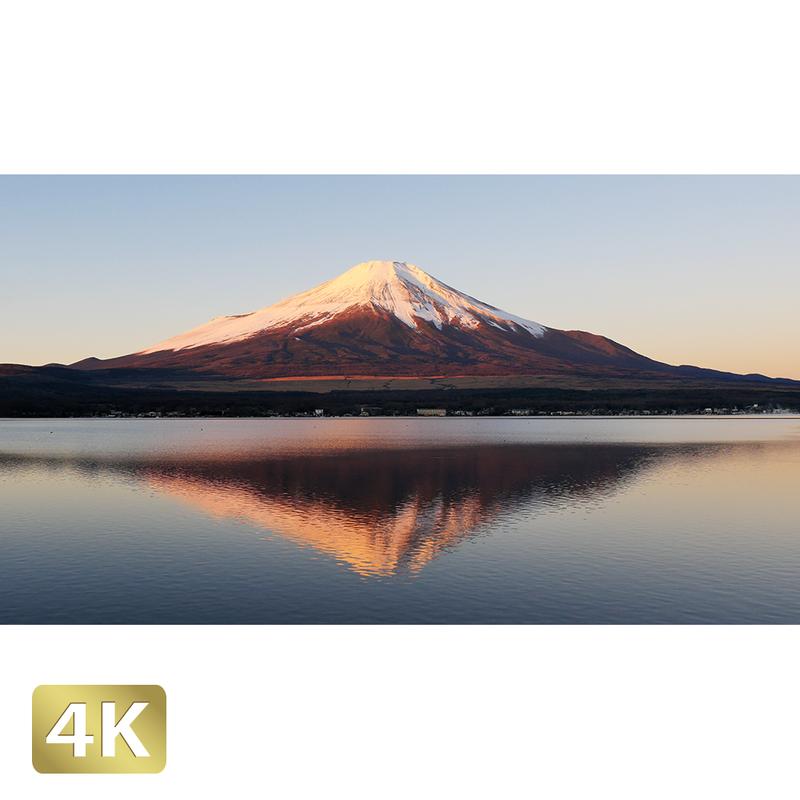 1018065 ■ 富士山 山中湖