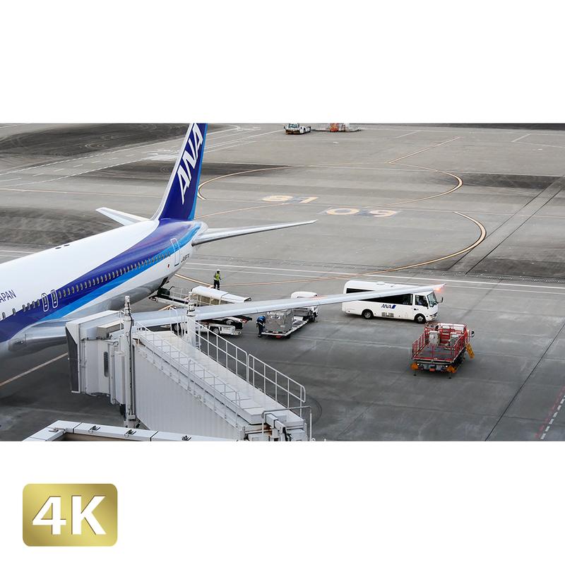 1028044 ■ 東京 羽田空港