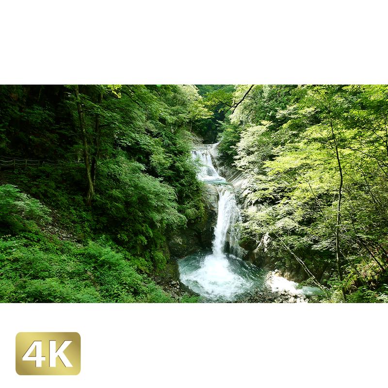 1010015 ■ 西沢渓谷 七ツ釜五段の滝