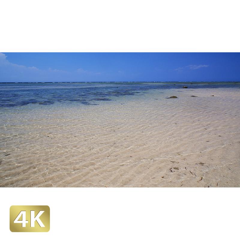 1023035 ■ 西表島 南風見田の浜