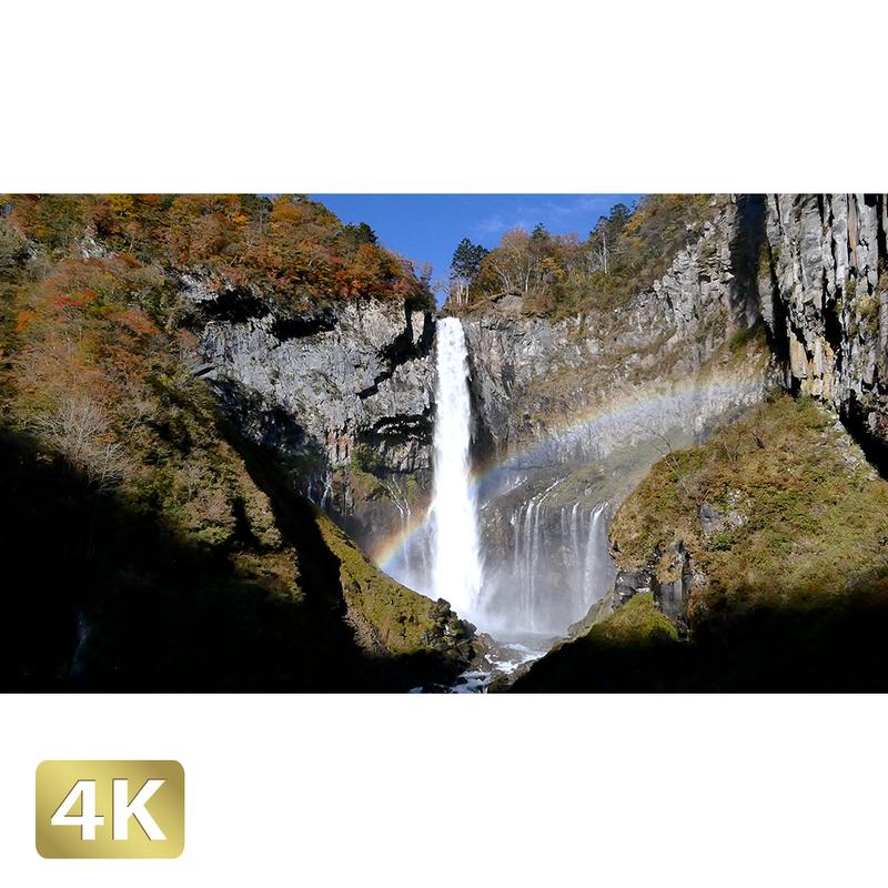 1014006 ■ 日光 紅葉 華厳の滝