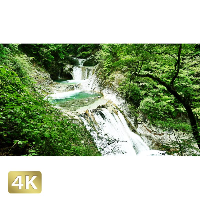 1010016 ■ 西沢渓谷 七ツ釜五段の滝
