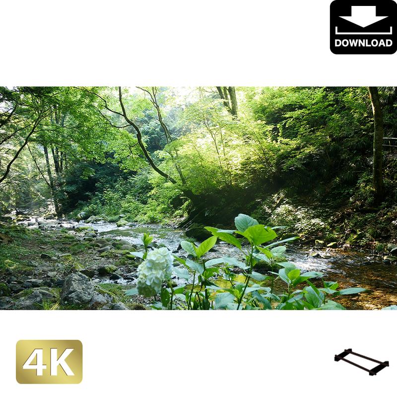 2004028 ■ 秋川渓谷 南秋川