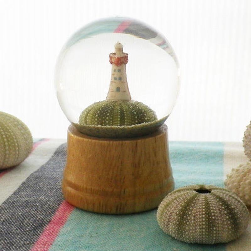 砂ドーム - urchin cape -